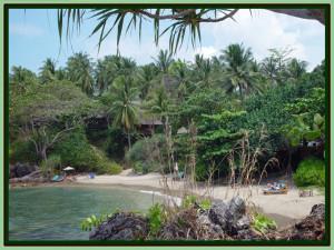 BeachWide